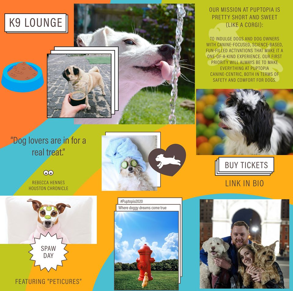puptopia-k9-lounge